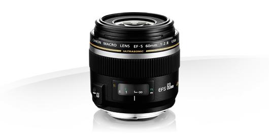 Canon EF-S 60mm f/2.8 Macro USM - Lenses - Camera & Photo lenses - Canon UK